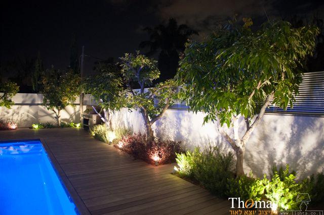 תאורת גינה דוקרנים להארת צמחים דקורטיבית