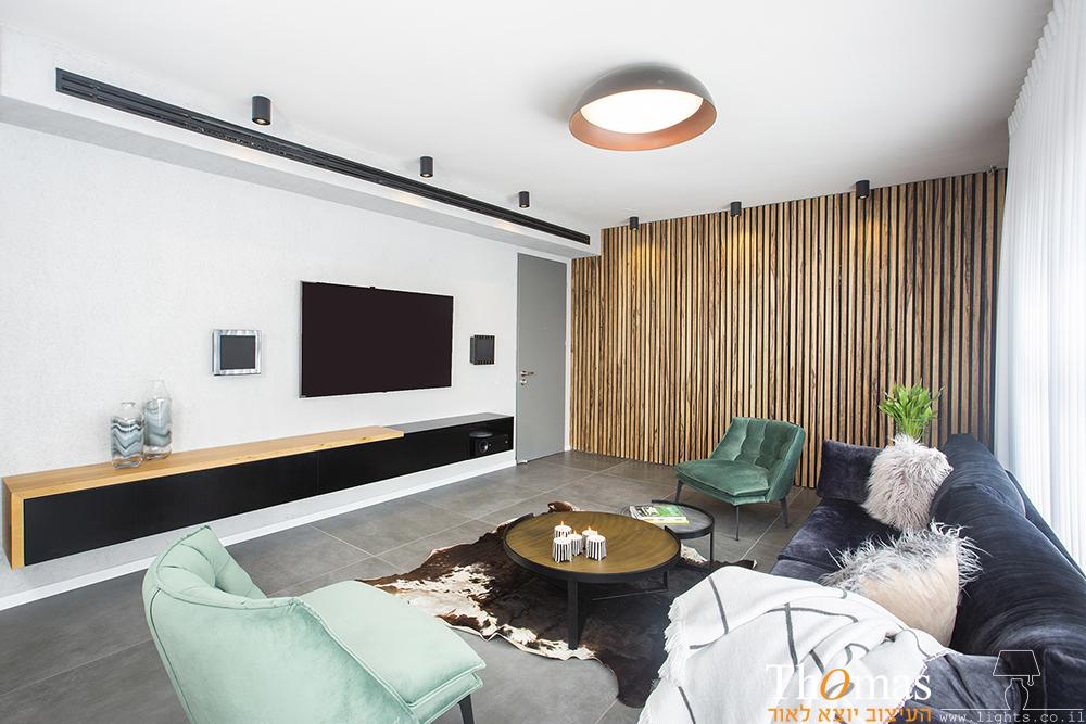 סלון עם מנורת תקרה צמודה גדולה וצילינדרים קטנים צמודי תקרה
