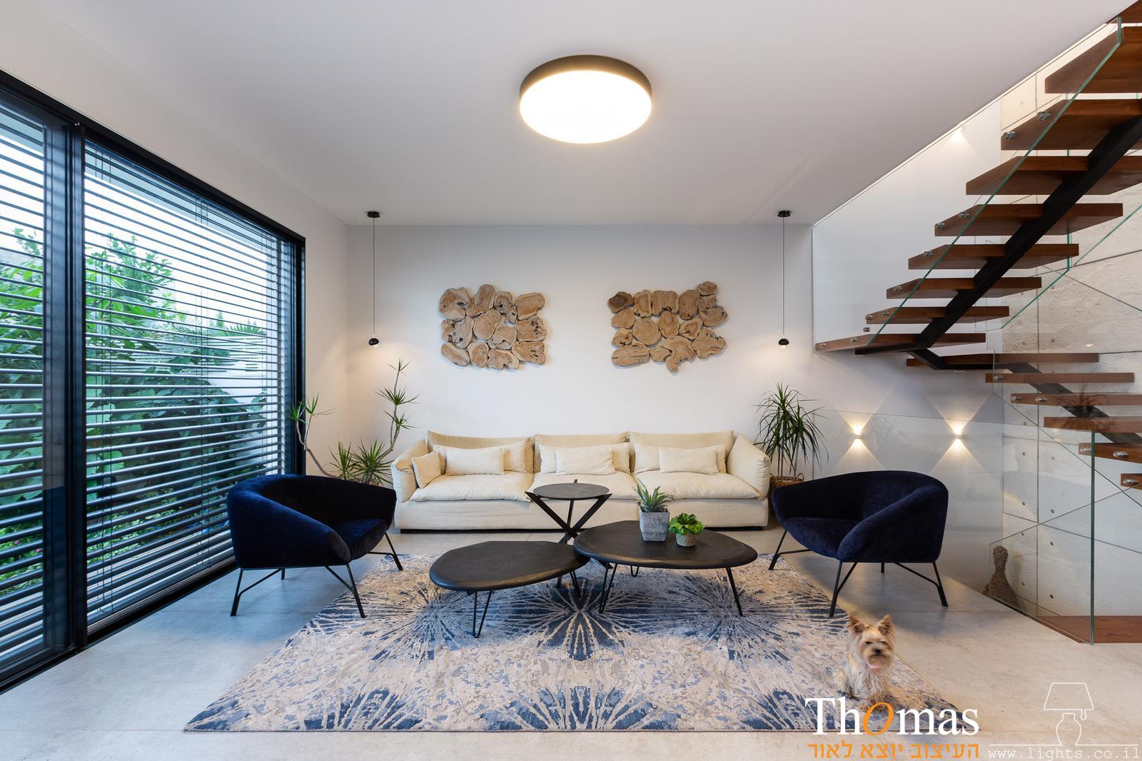סלון, מנורת תקרה, צוד תקרה גדול 100503
