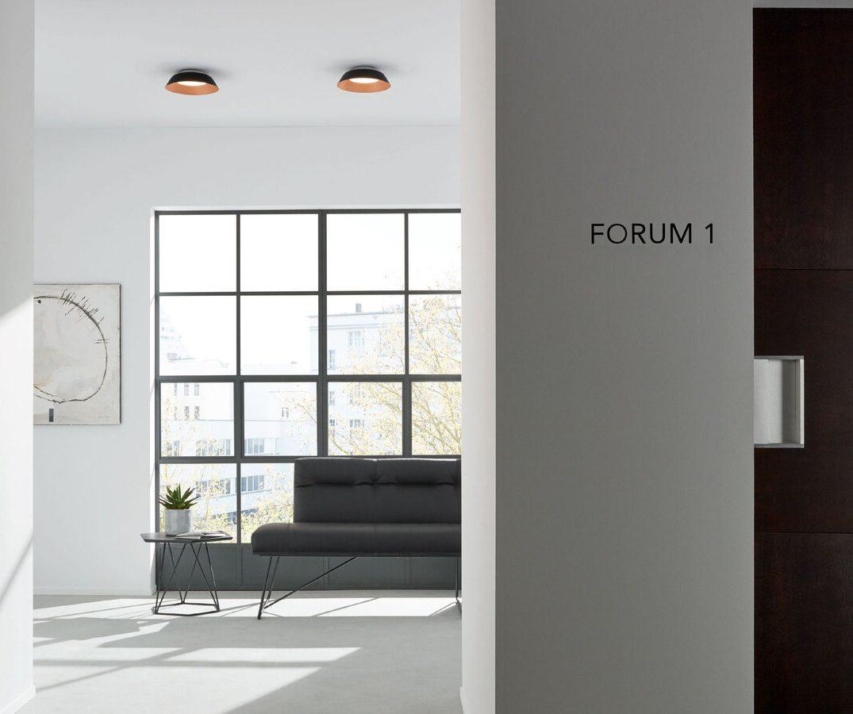 צמודי תקרה 1